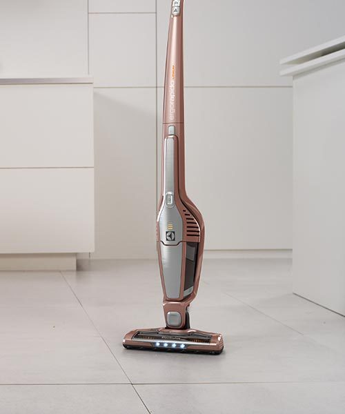 Electrolux Cordless Vacuum Cleaner Standing on the floor